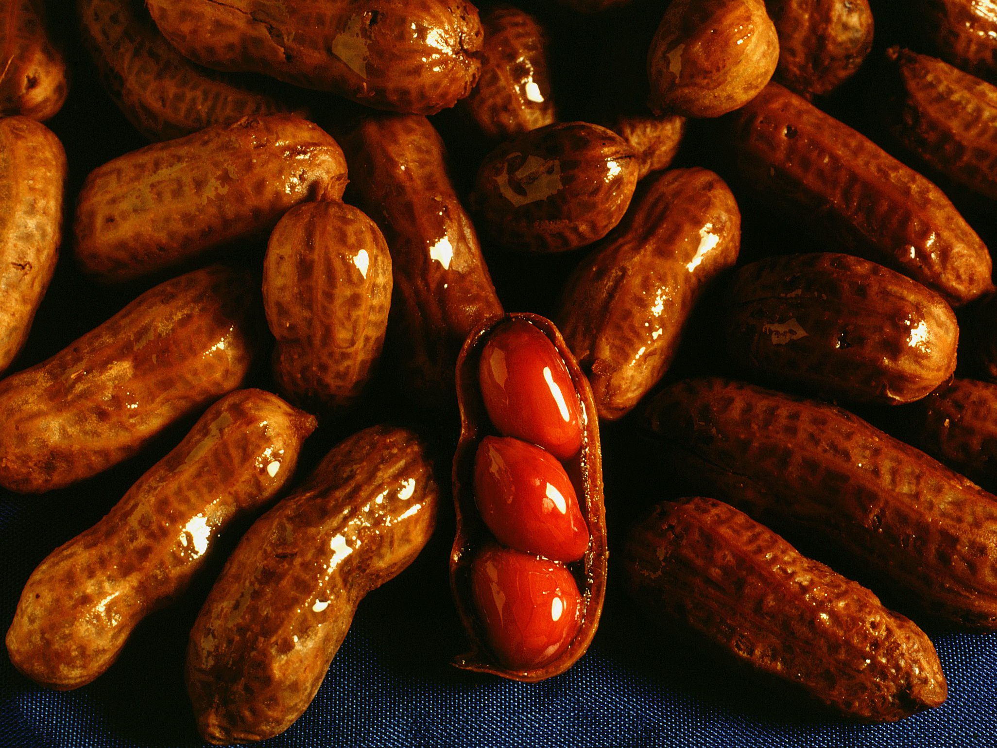 In the kitchen with Kelley: Slow Cooker Boiled Peanuts