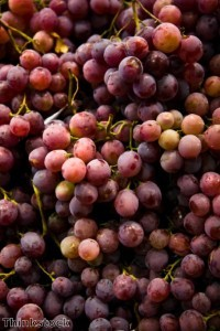 Compound Found In Grapes, Peanuts May Promote Weight Loss