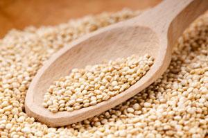 Quinoa, A Complete Plant Protein