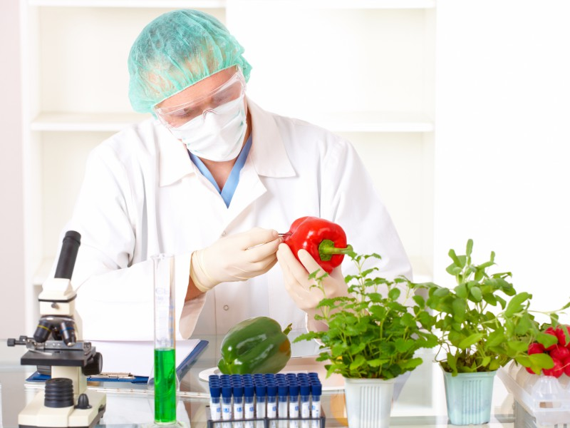 The gmo corporate trick that s adulterating your food