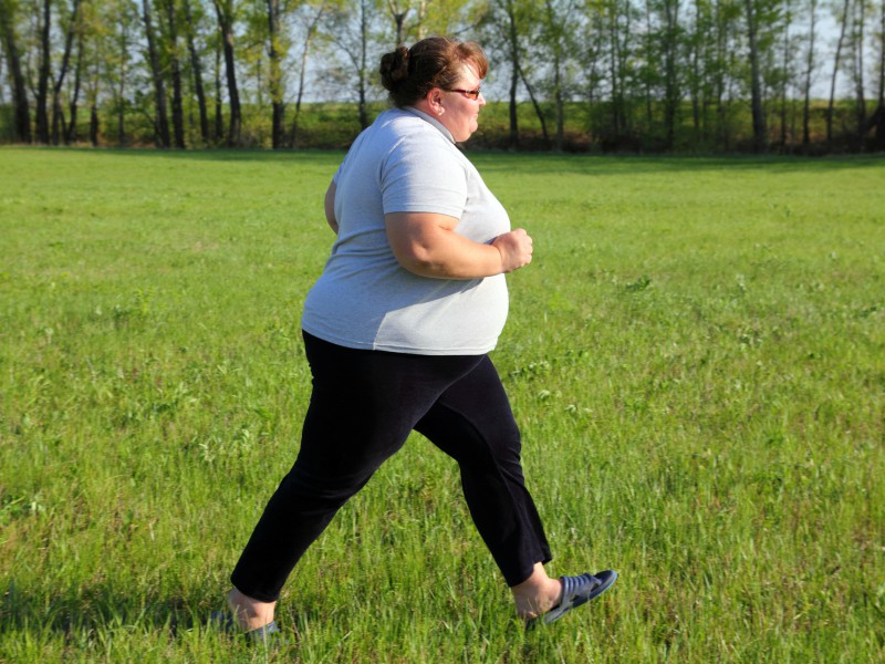 how obesity can damage brain functions