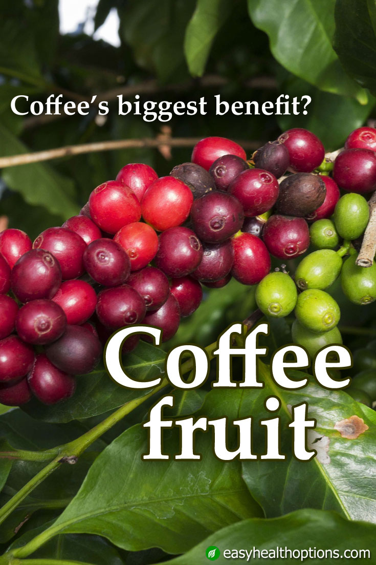 is dried fruit healthy for you coffee fruit extract