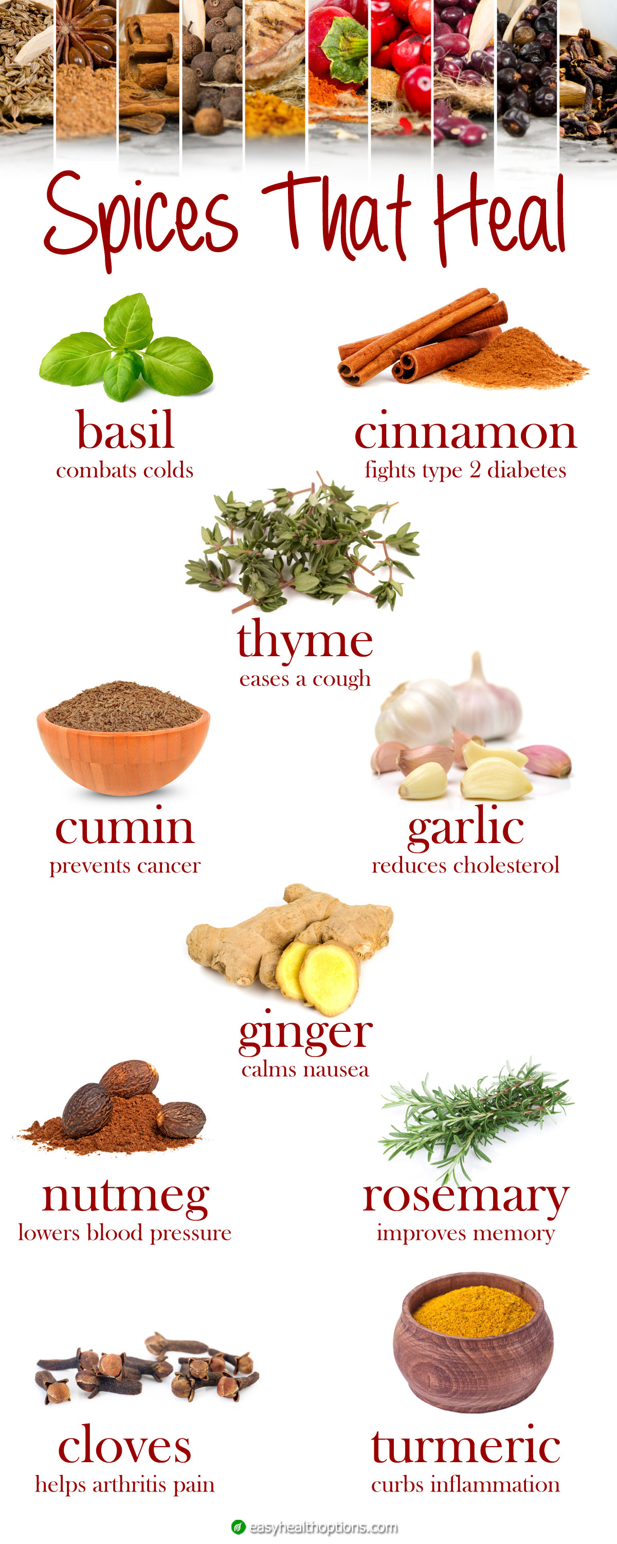 Spices That Heal Infographic Easy Health Options 174