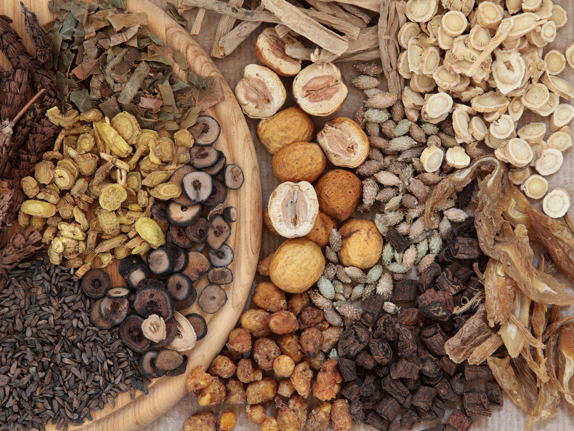 Ancient herbal root kills cancer without harming healthy cells