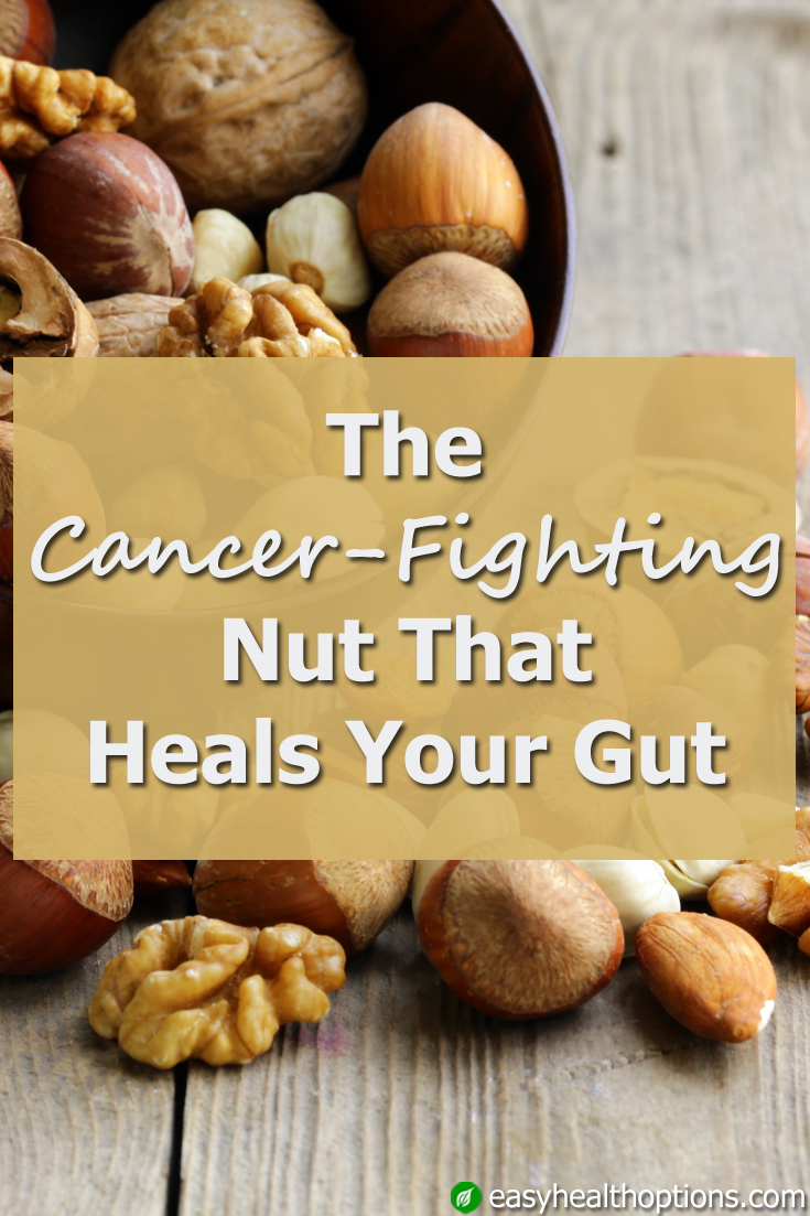 The Cancer Fighting Nut That Heals Your Gut Easy Health