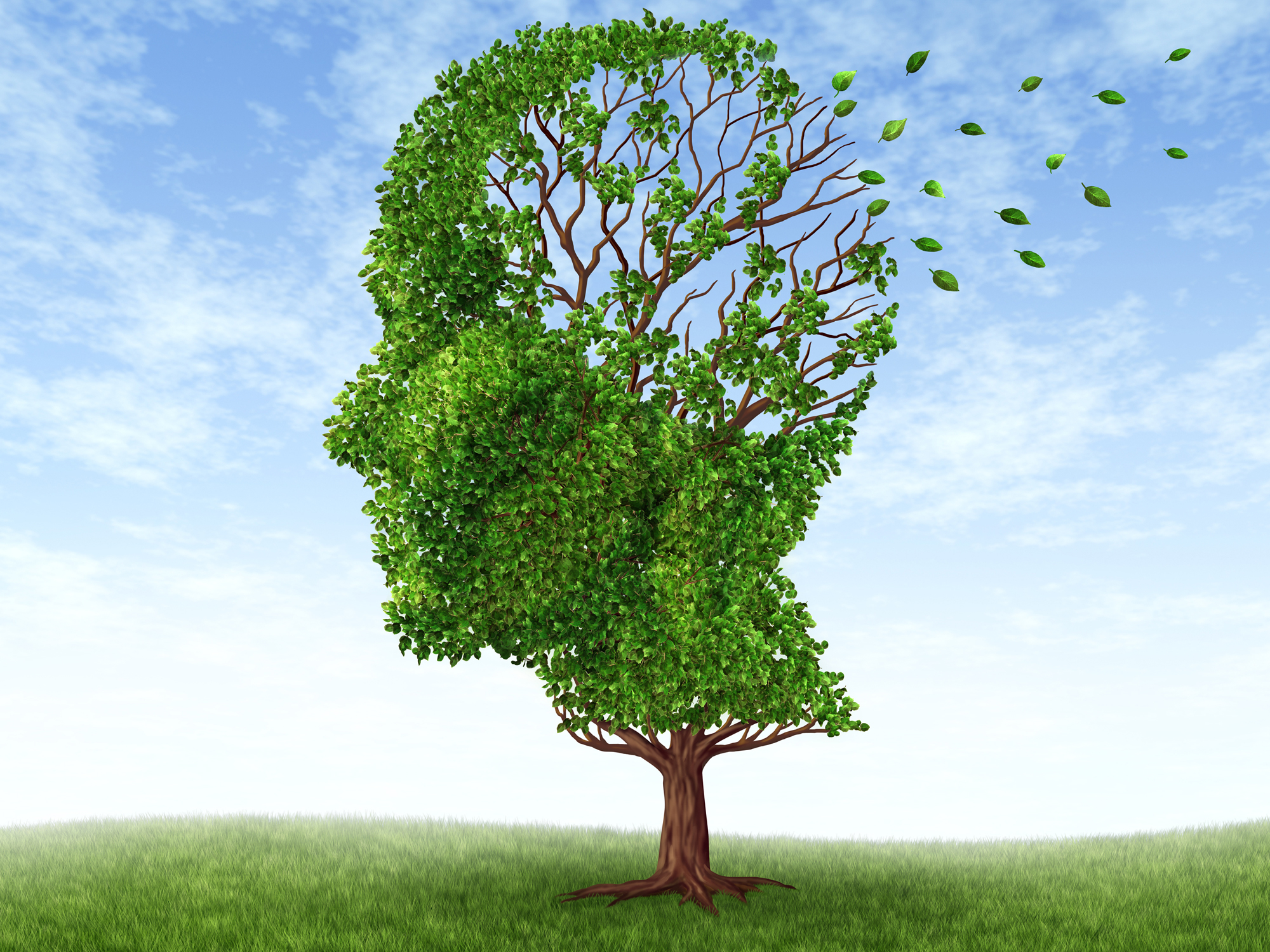 Top brain-saving nutrients stave off old timer's diseases