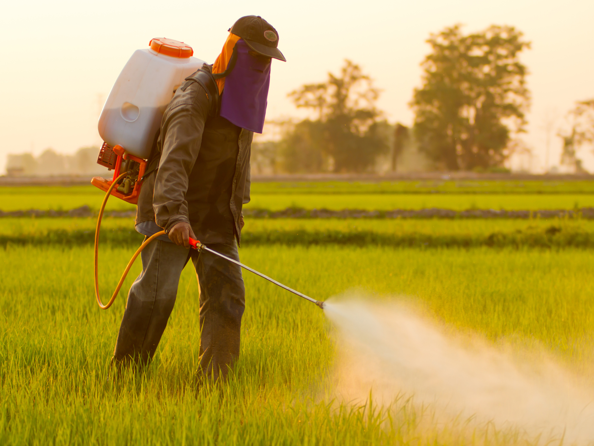 Farmer spraying herbicide