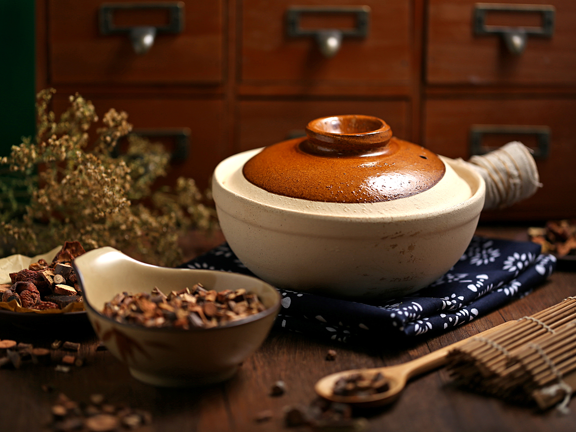 How Chinese herbal medicine works