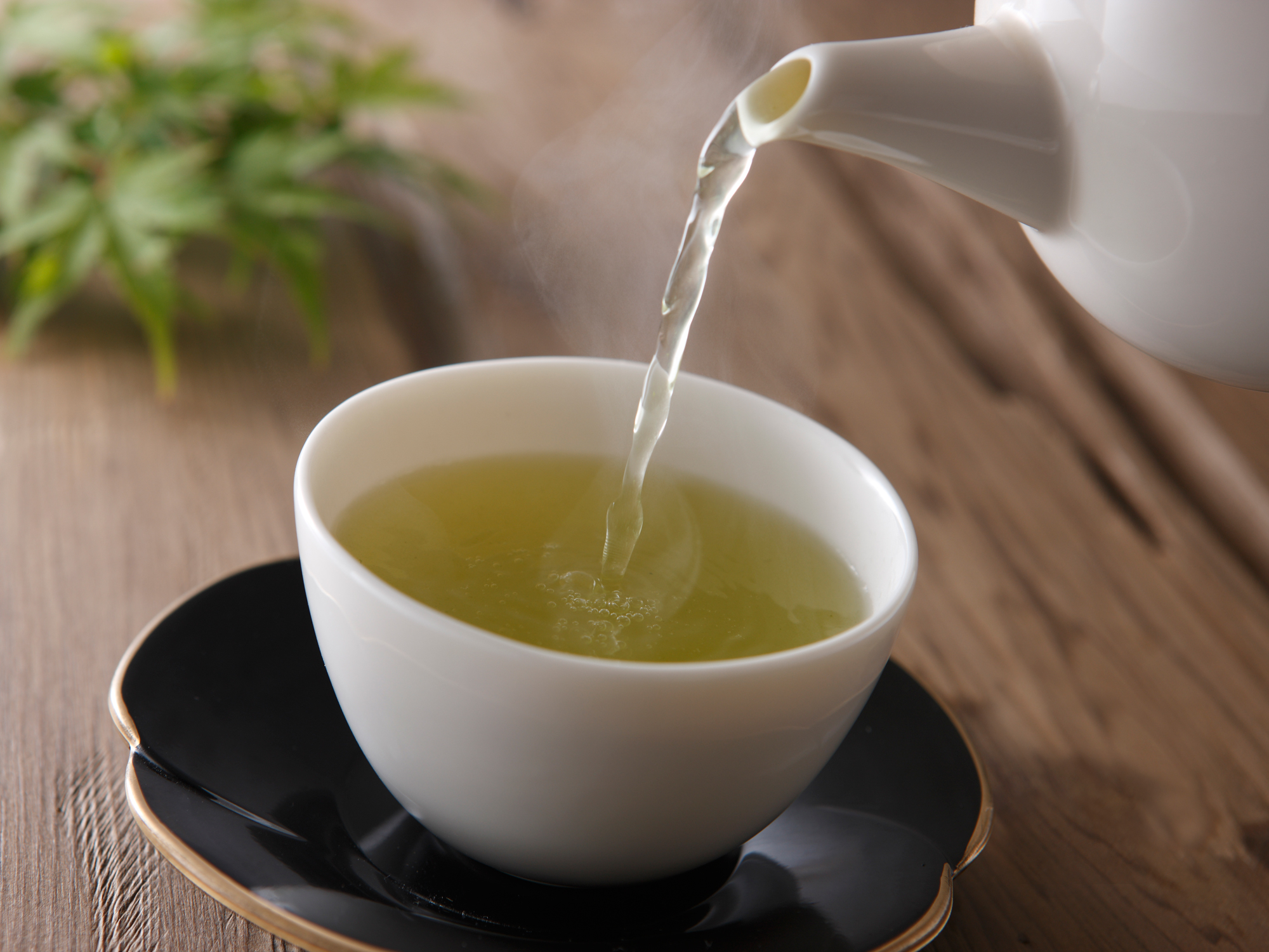 Green tea continues to amaze as potent cancer-killer