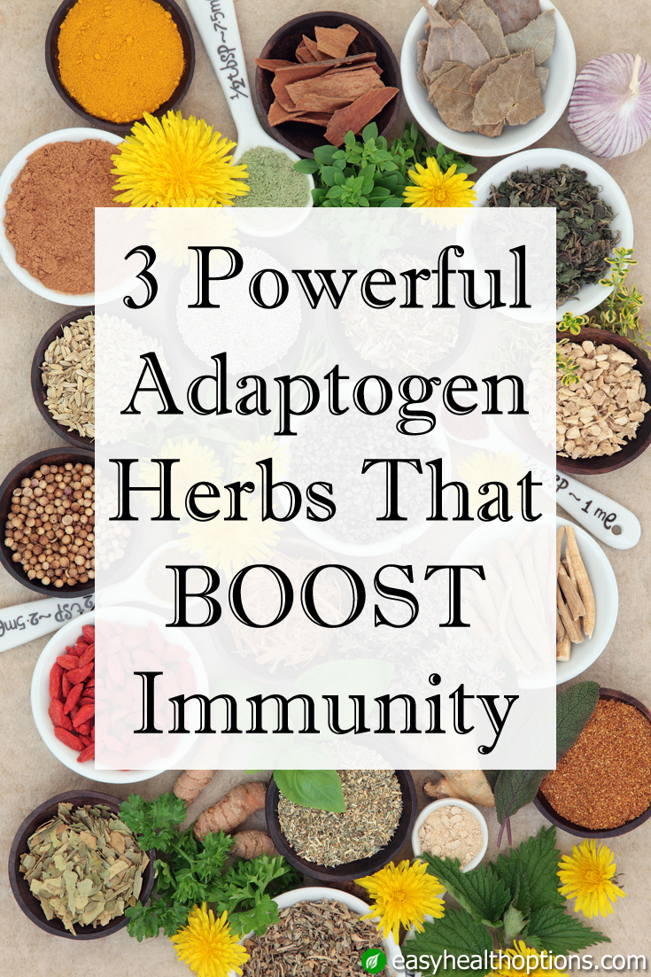 3 Powerful Adaptogen Herbs That Boost Immunity Easy