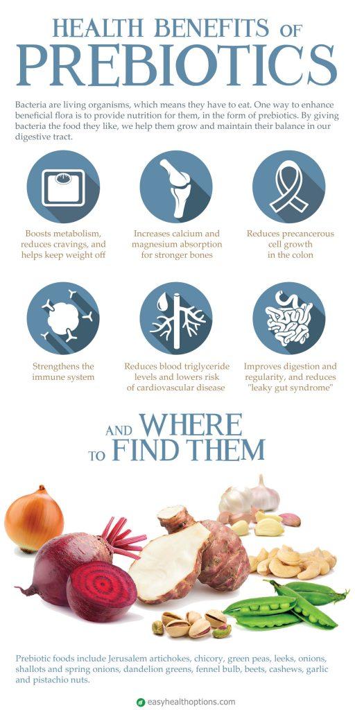 Health benefits of prebiotics [infographic]