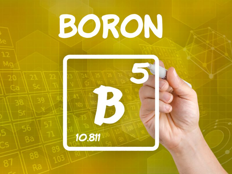 Image result for boron supplement