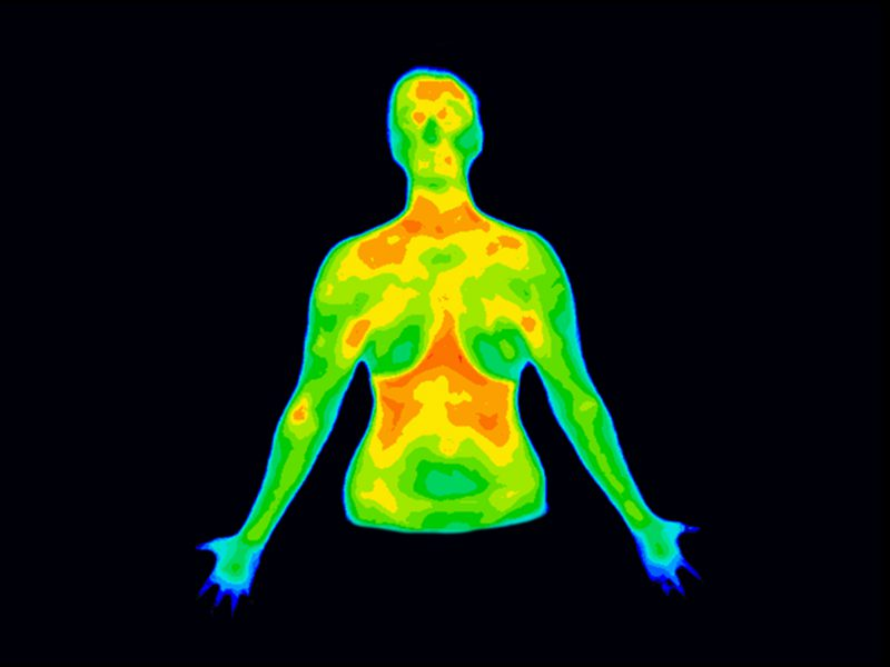 Is thermography the best option for breast screening