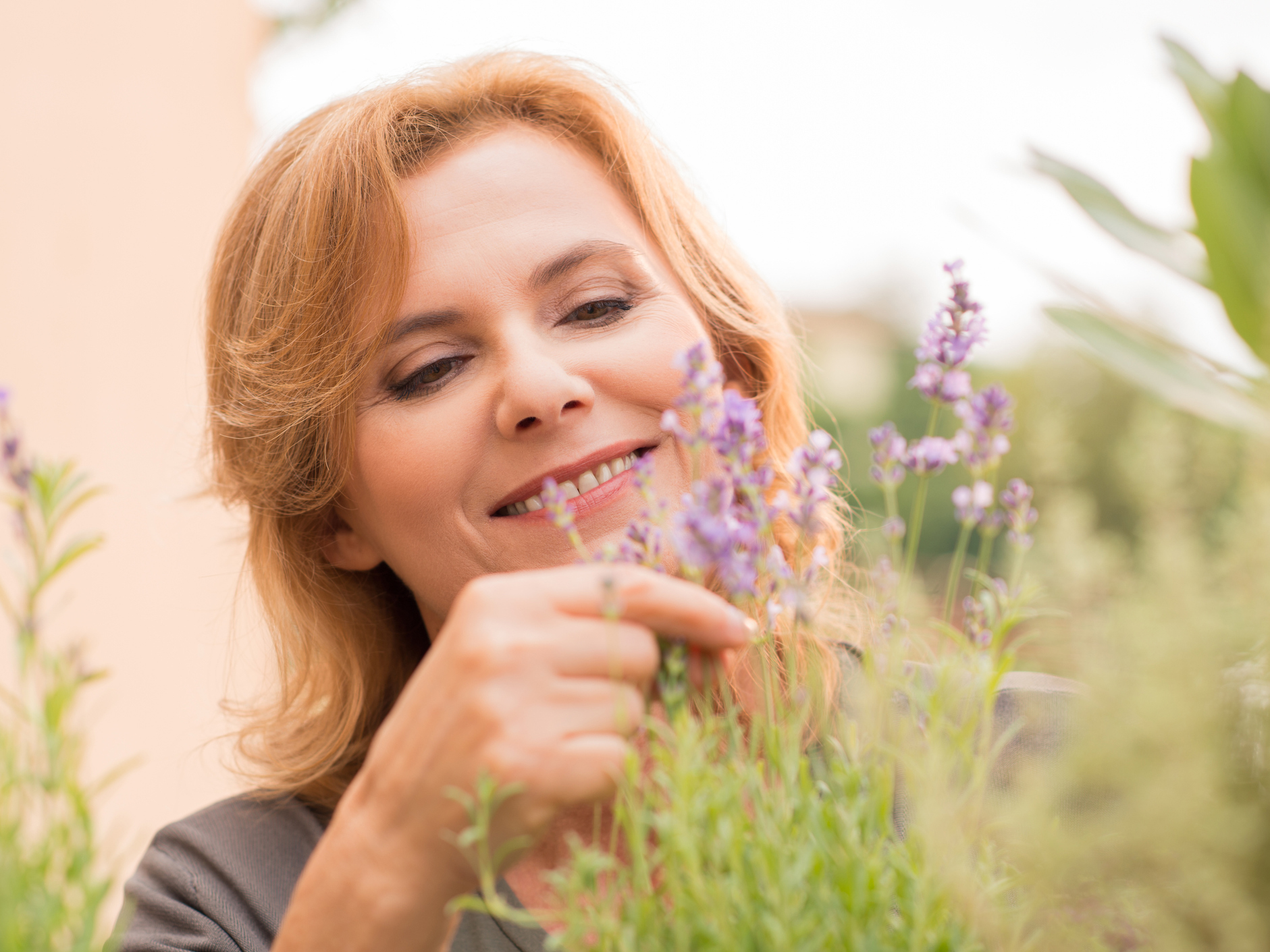The truth about lavender and stress