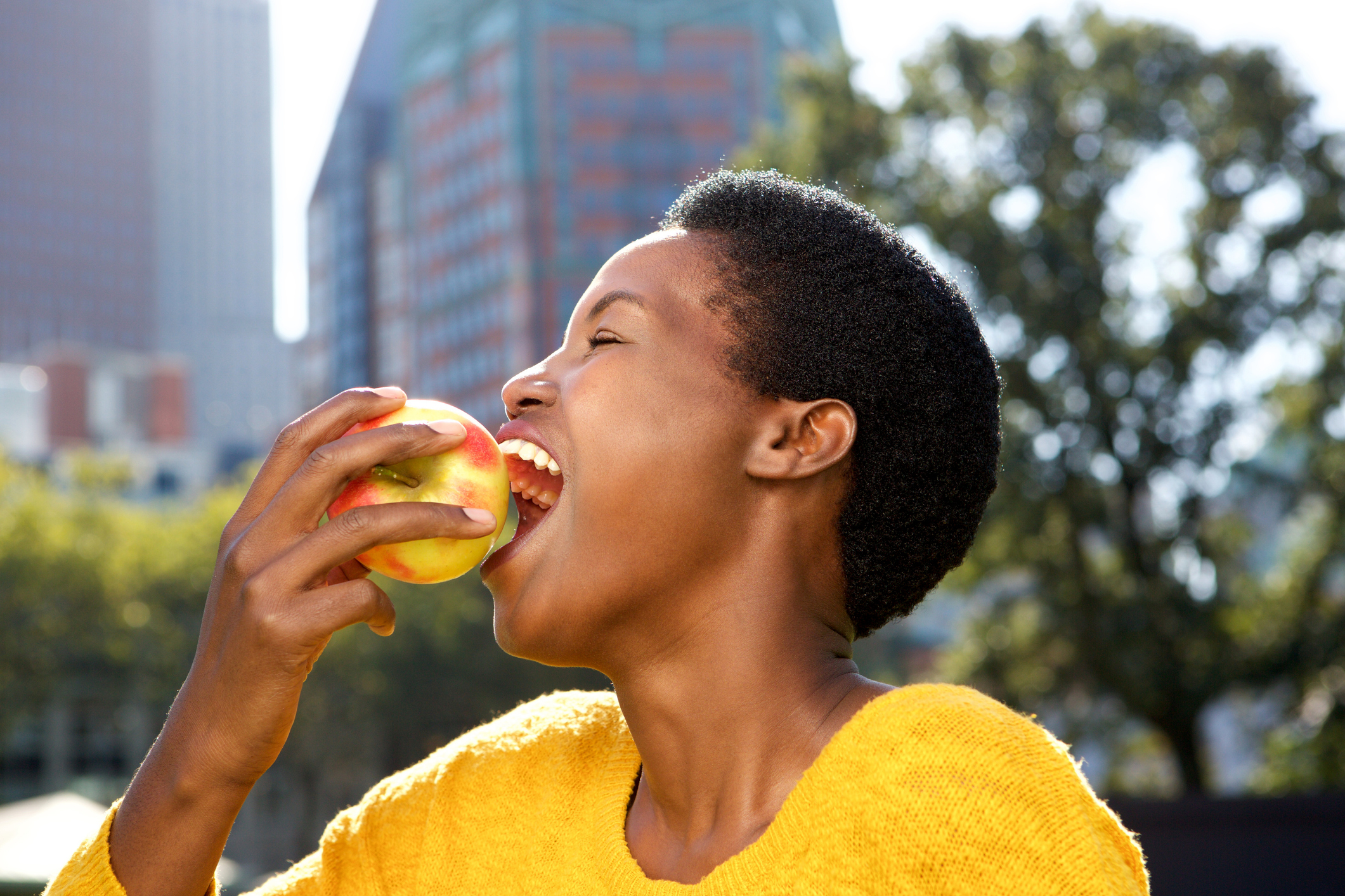 Eating the skins of some fruits could reverse the damage of MS