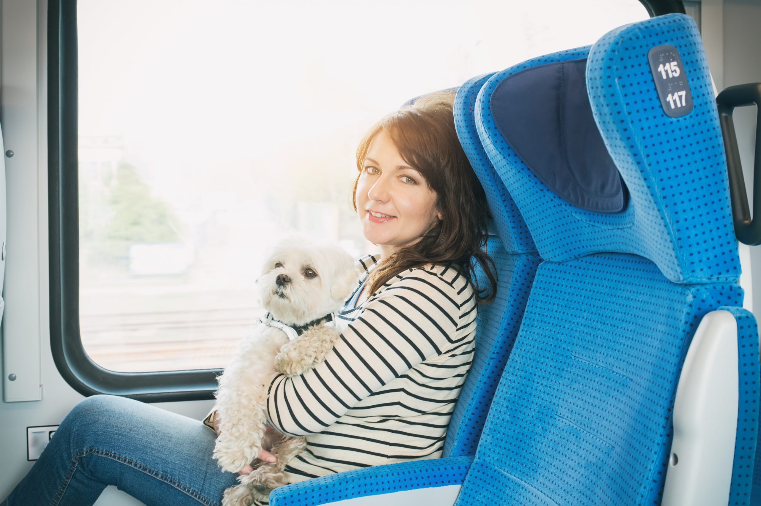 The natural health benefits of an emotional support animal