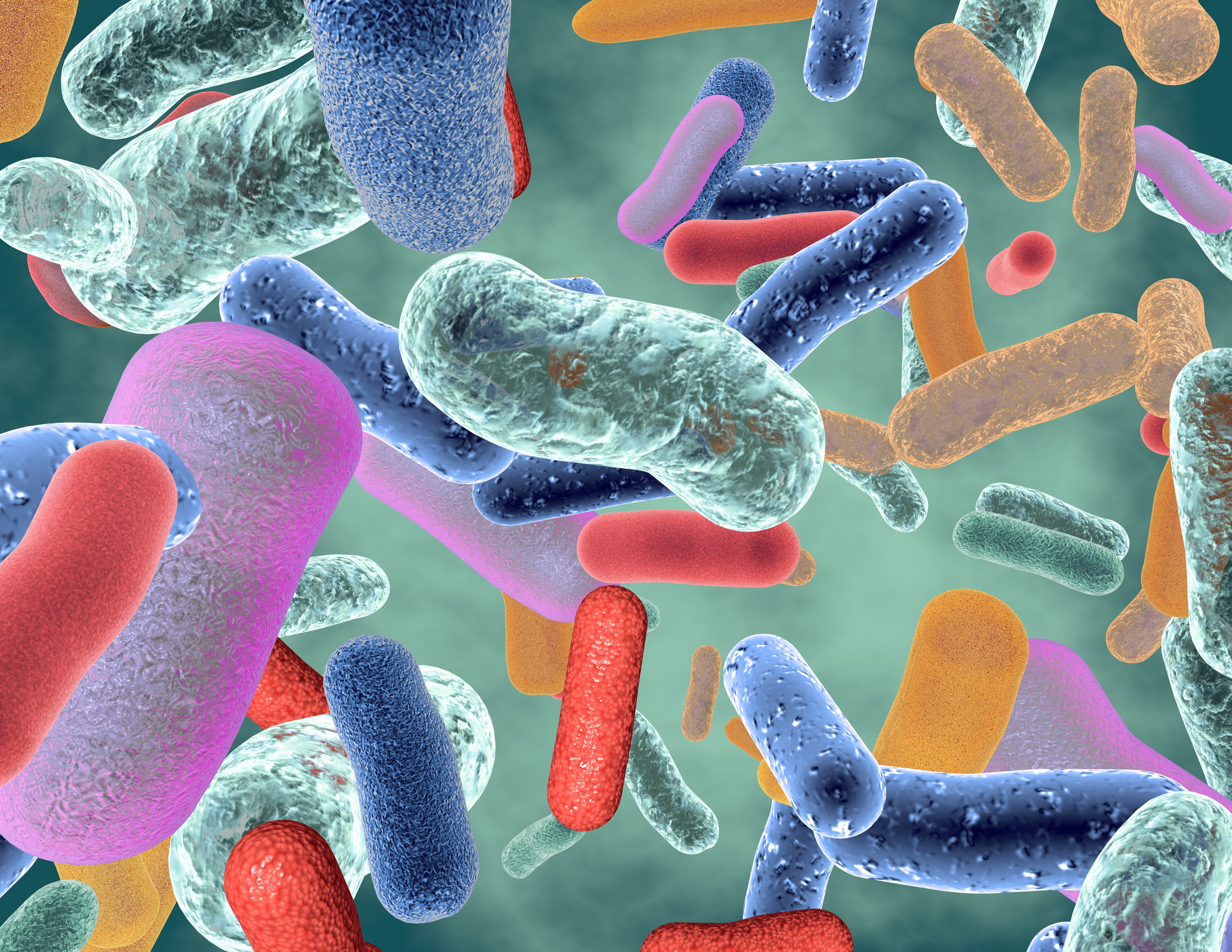 Gut bacteria linked to high blood pressure and more than 2 dozen other diseases