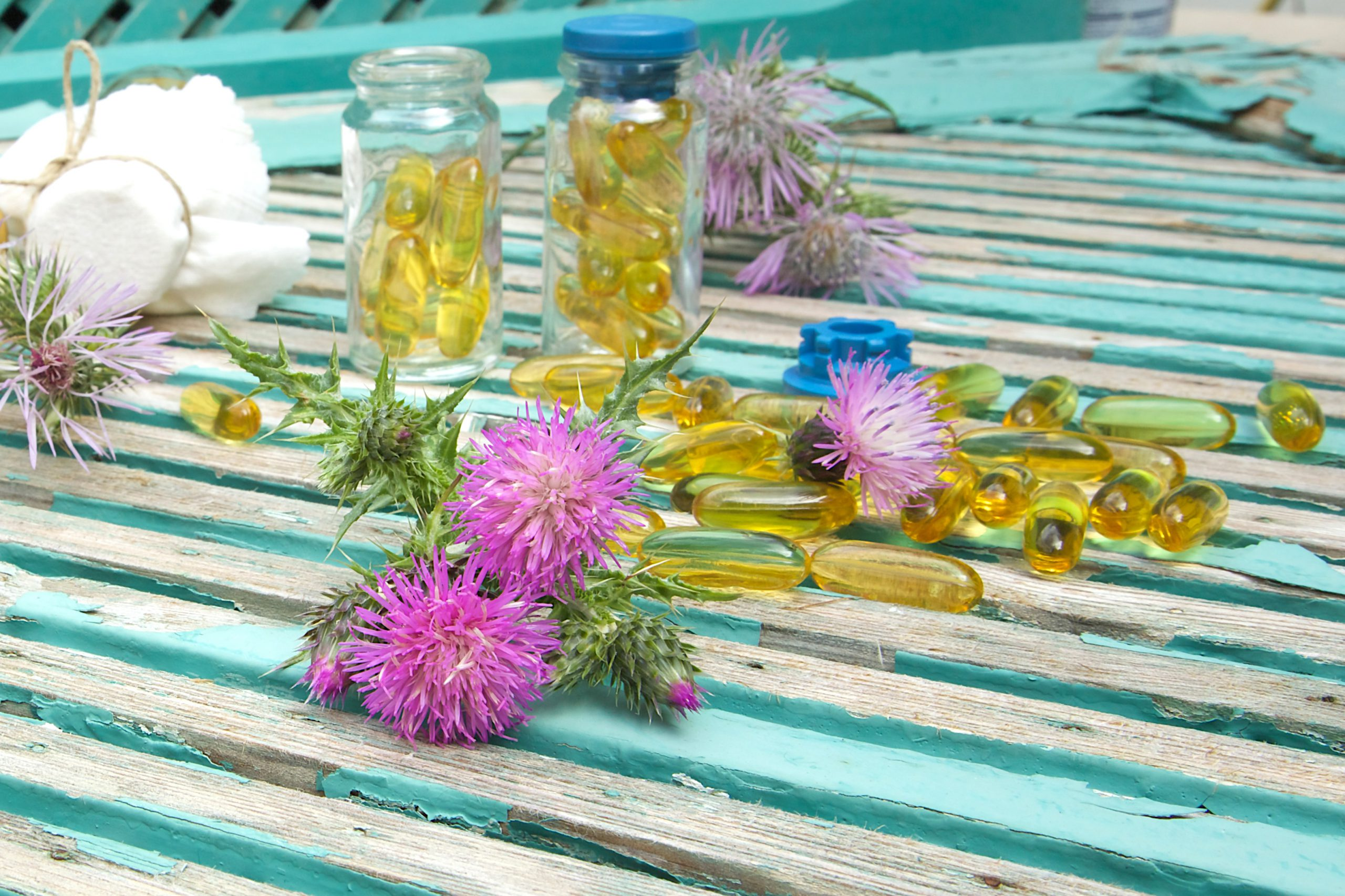 Milk thistle: Liver support for better cholesterol, blood sugar and weight
