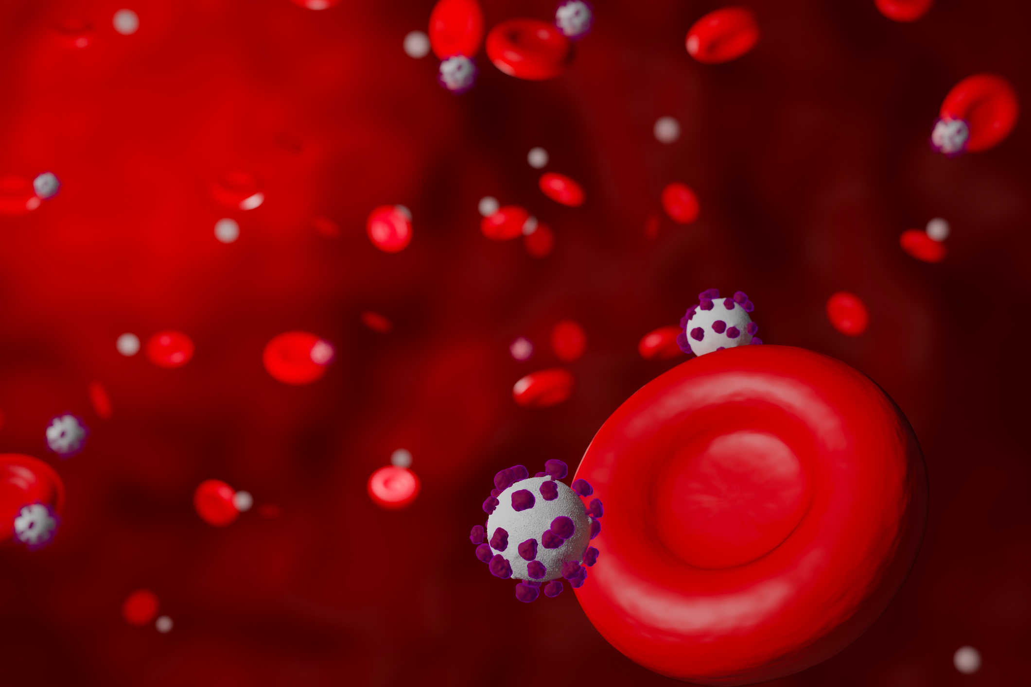 The cell in your body that may cause COVID-19 blood clotting