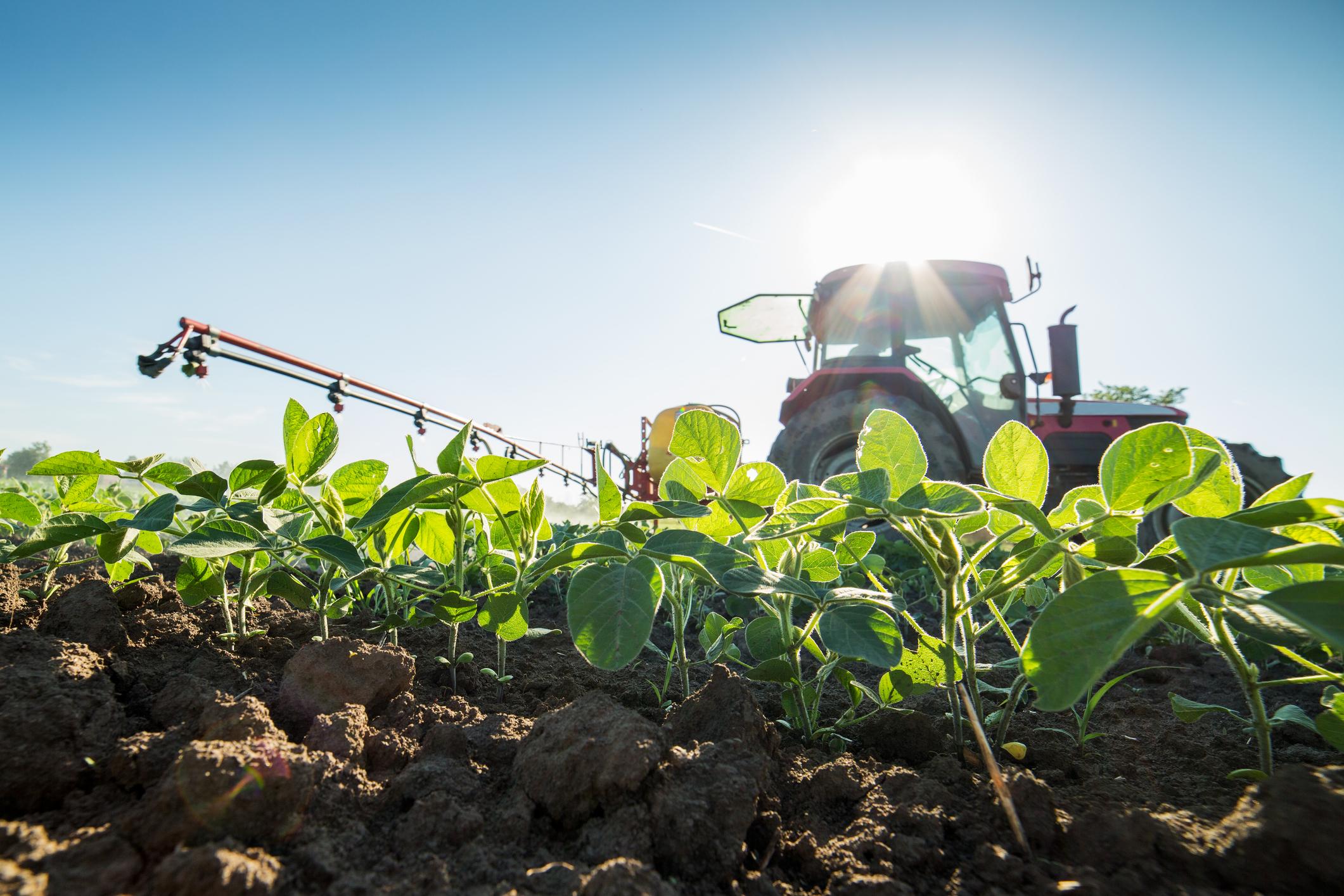 The dangerous link between herbicide and Parkinson's