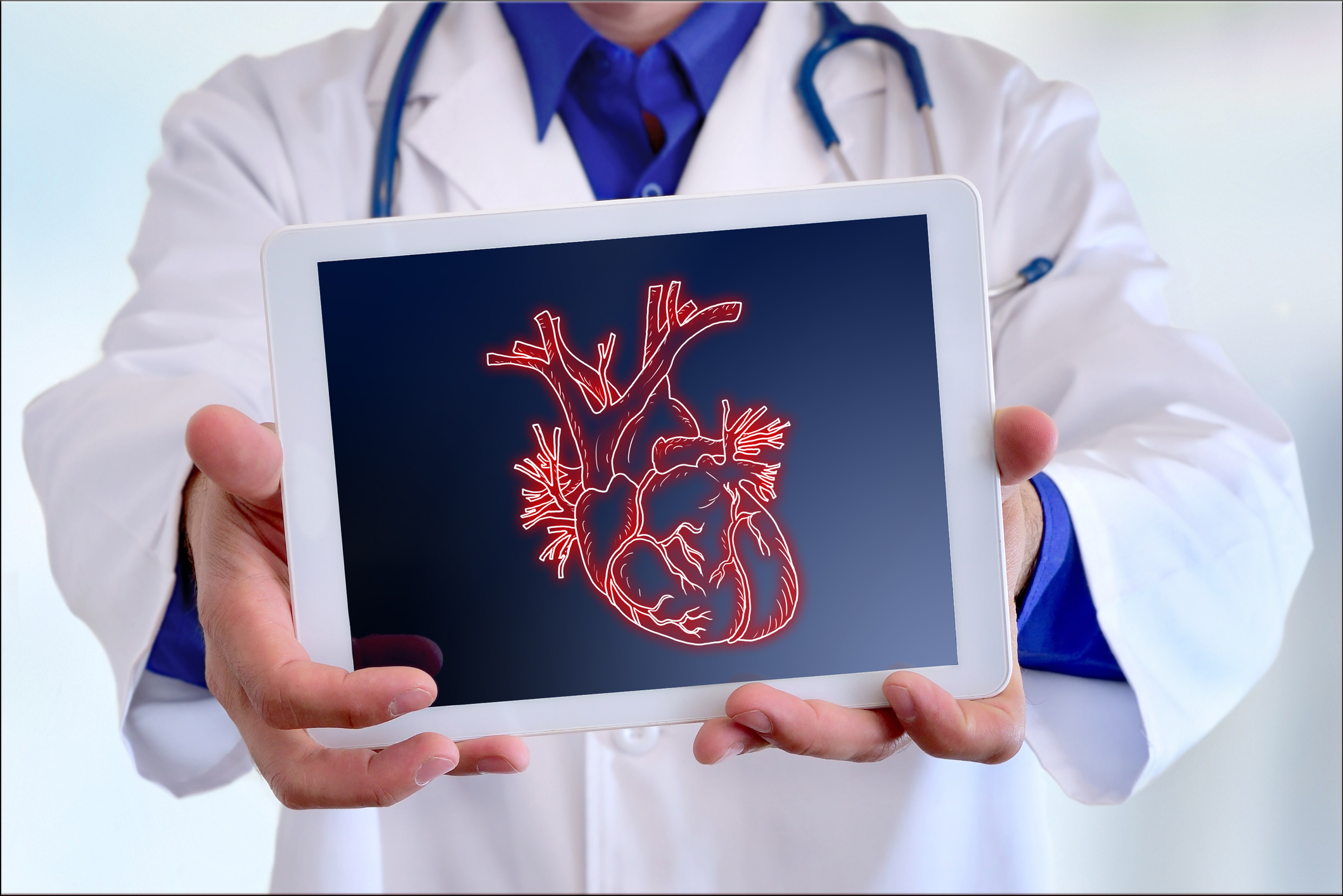 What meat does to your ventricles, arteries and heart function