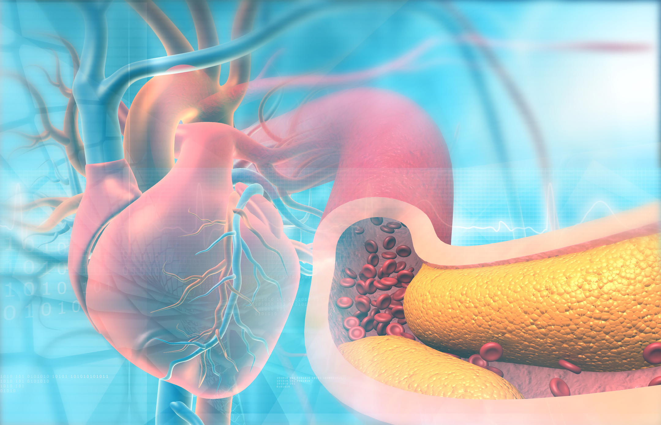 The other reason HDL  protects against narrowing of the arteries